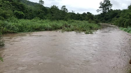 The water in the river is opaque and heavy because of heavy rain in the forest of Thailand.