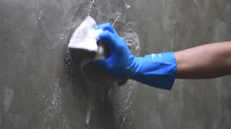 mold : Closeup hand wearing blue rubber gloves is using a sponge cleaning on the concrete wall.