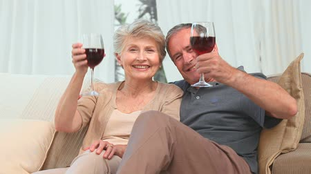 carinho : Mature couple enjoying a glass of red wine in the living room Vídeos