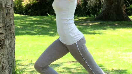 exercícios : Pretty woman doing stretching excersises against a tree in a park