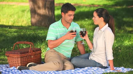 пикник : Couple drinking red wine on a picnic while sitting under a tree