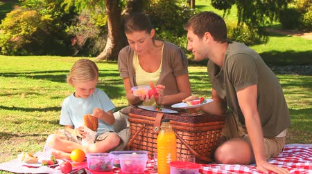 пикник : Cute family having a picnic in a park Стоковые видеозаписи