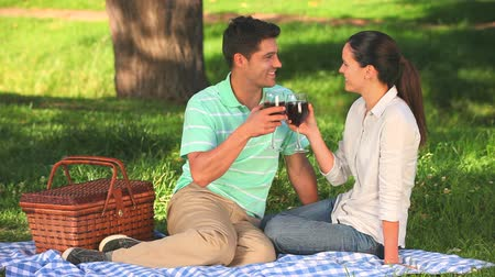 пикник : Cute couple drinking red wine sitting under a tree  in the park Стоковые видеозаписи