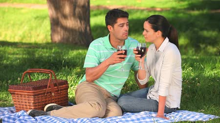 пикник : Attractive couple sitting under a tree drinking red wine on a picnic  Стоковые видеозаписи