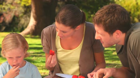 пикник : Young parents with their small son eating strawberries and bread on a picnic in a park