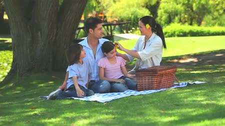 пикник : Family opening their picnic basket sitting on the grass under a tree in the park  Стоковые видеозаписи