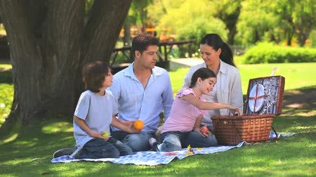 пикник : Family putting their  things away after a picnic in the park