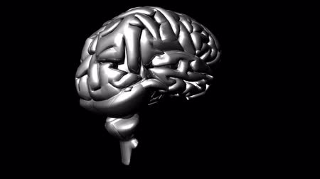 neurologia : Cerebro en HD