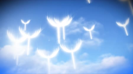 проворный : Animation of dandelion greens flying in HD
