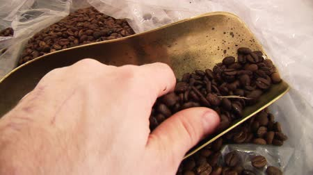 grano de cafe : HD tiro de granos de café -3 Archivo de Video