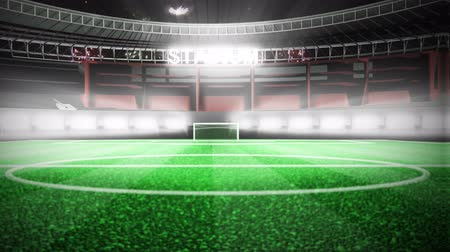 дичь : Animation of a stadium celebrating a goal