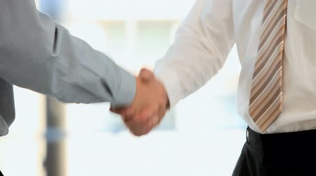 tratar : Businessmen shaking hands in an office