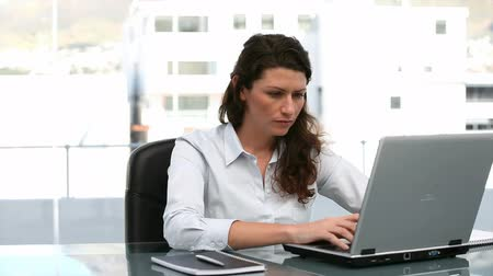 oblek : Businesswoman working on a computer in an office