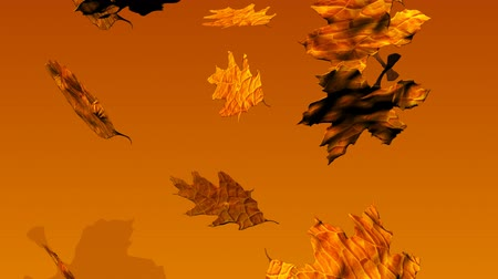 listki : 3D Animated Autumn Leaves Falling