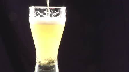 pouring : Stock Footage  - Pouring Beer Into a Glass
