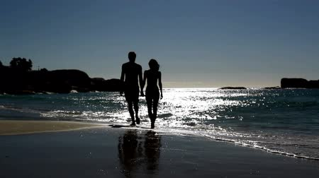 romantic couple : Lovely couple walking under the moonlight on the beach Stock Footage