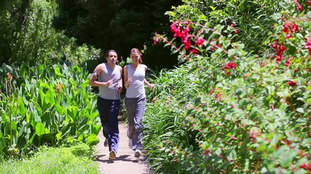 pedometer : Couple being out of breath after running in a park Stock Footage
