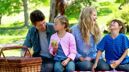 пикник : Family picnicking together in a park Стоковые видеозаписи