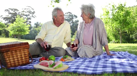пикник : Retired couple having a picnic together in a park