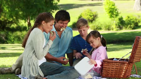 пикник : Family eating sandwiches during a picnic in a parkland Стоковые видеозаписи