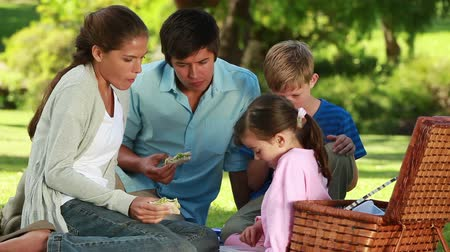 sağlıklı beslenme : Happy family eating their sandwiches in the countryside Stok Video