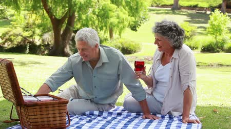 пикник : Mature people sitting on a blanket with glasses of red wine in a parkland