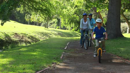 парк : Happy family riding bikes on a pathway in a parkland