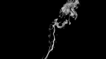 cigarettes : Incense white smoke in super slow motion against black background