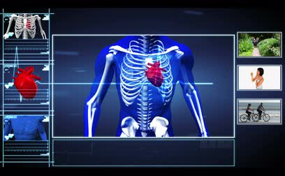 akciğer : Medical interface showing skeleton running and healthy lifestyle clips with ECG line running through