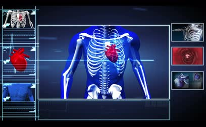puls : Interface showing running skeleton with pumpig heart and vein interior in blue black and red