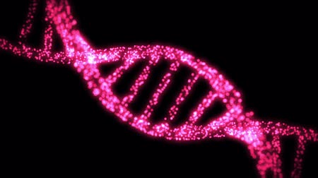 ДНК : Appearing and dissappearing DNA helix in shimmering pink