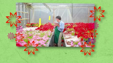kötény : Montage of florists at work on green background Stock mozgókép