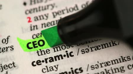 vezérigazgató : Definition of CEO highlighted in the dictionary