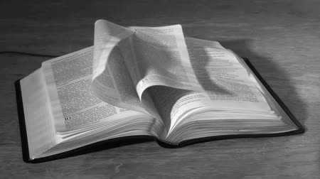 página : Bible pages turning in the wind in black and white in slow motion Vídeos