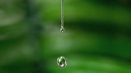 vízcseppek : Drop of water falling against green natural background in slow motion Stock mozgókép
