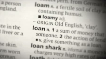 loans : Focus on loan in the dictionary