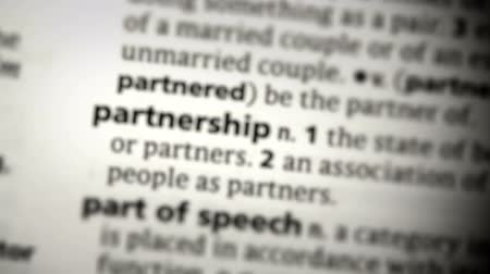 partnerstwo : Focus on partnership in the dictionary
