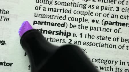 zvýrazňovač : Partnership highlighted in purple in the dictionary