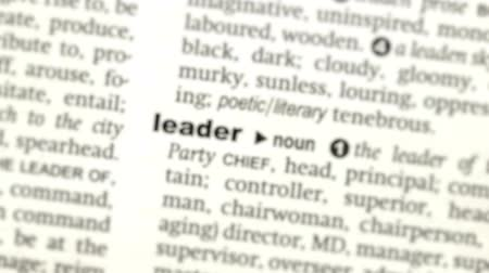 anlamı : Focus on leader in the dictionary