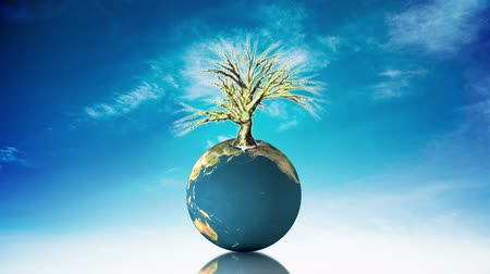 деревья : Globe spinning with tree on blue background  Стоковые видеозаписи