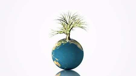 földgolyó : Earth globe spinning with growing tree on white background