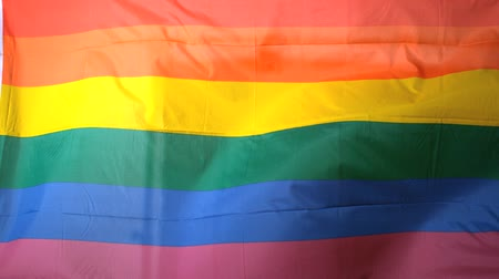 гей : Rainbow flag blowing in the breeze in slow motion
