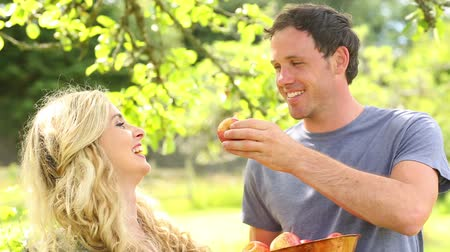 feed on : Happy couple eating apples together in a garden on a sunny day Stock Footage
