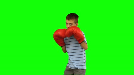puncs : Little boy with boxing gloves boxing on green screen in slow motion Stock mozgókép