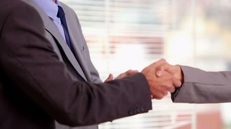 partnerstwo : Businesswoman shaking hand of a businessman as an agreement