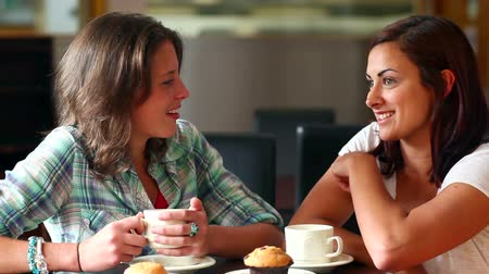 chatting : Two students chatting together in the canteen at the university Stock Footage