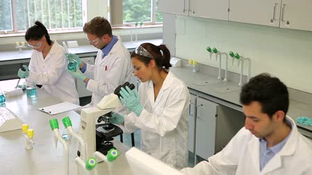 laboratuvar önlüğü : Team of focused science students working together in the lab at the university