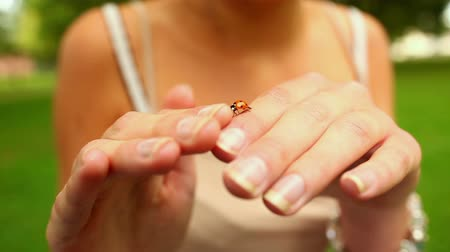 joaninha : Tiny ladybird crawling over girls hands on a sunny day