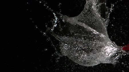 léggömb : Dart piercing water balloon in slow motion in slow motion Stock mozgókép