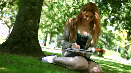 vöröshajú : Lovely smiling redhead doing assignments sitting on lawn in a park